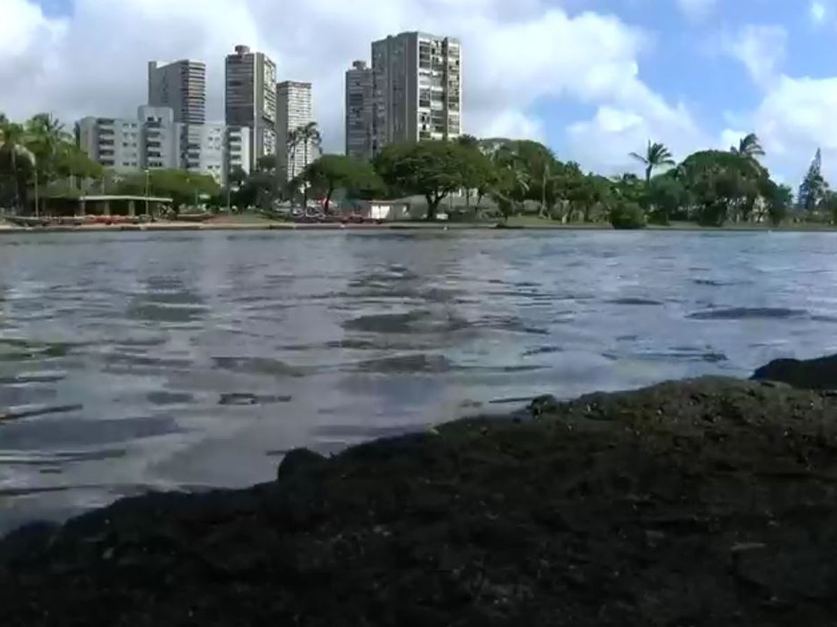Judge to hear motion for preliminary injunction on Ala Wai flood project
