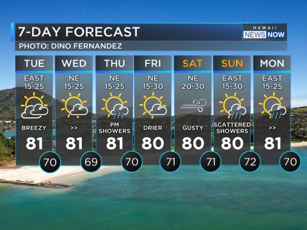 Forecast: Gusty winds ahead of rainy weather; large surf on the way