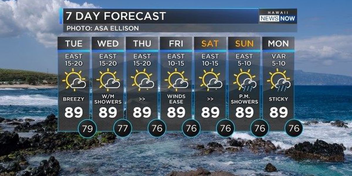 Forecast: Trade winds produces bump in surf