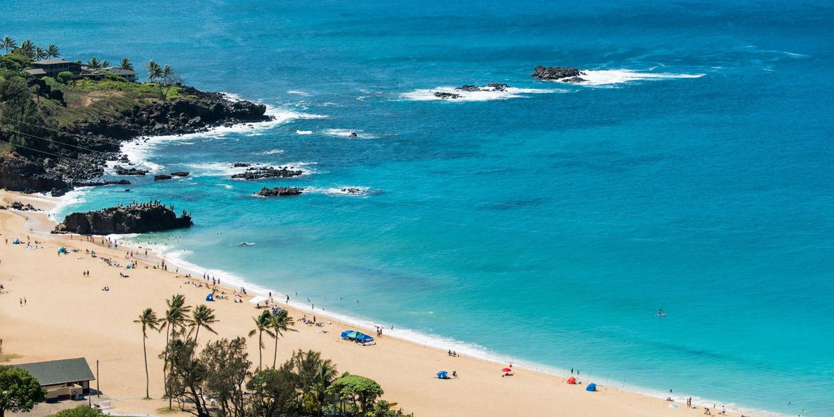 Forecast: The trade winds are here, but not for long