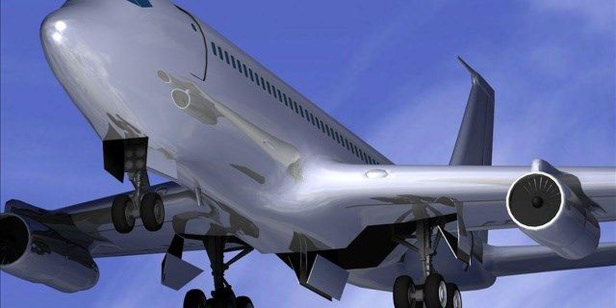 Rowdy Korean Air passenger's 3-year prison sentence reversed