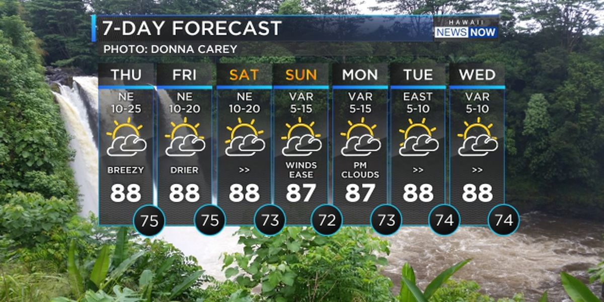 Forecast: Lighter winds, drier conditions heading in for the weekend