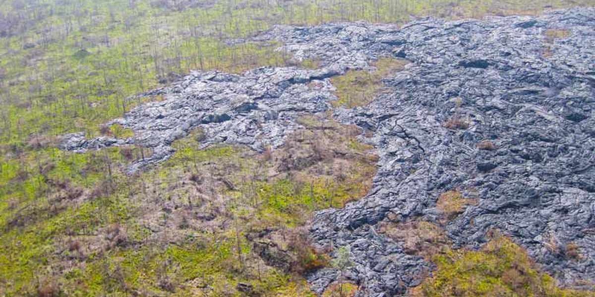PHOTOS: A look at the destruction from past Puna lava flows