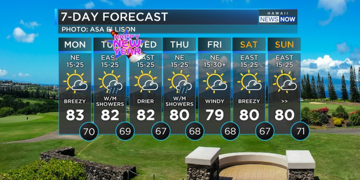 Forecast: Breezy trade winds, warning-level surf heading in