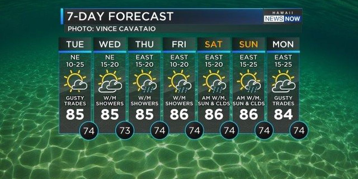Forecast: A cloudy and wet Tuesday morning