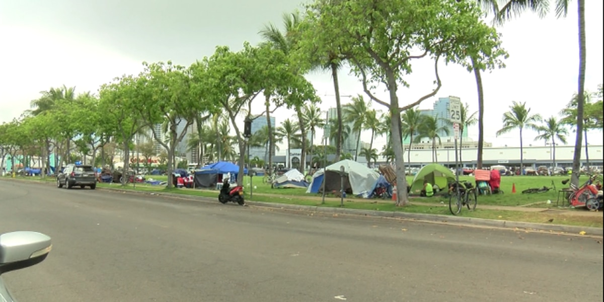 Critics warn plan to turn over Kakaako parks to city opens door to commercialization