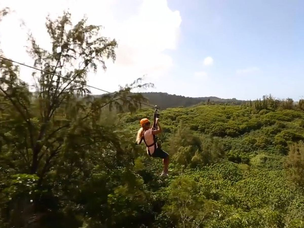 Plan to install zipline in Laie, but tourism shutdown puts project's future in doubt