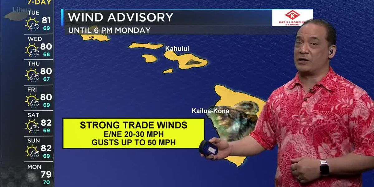 Continued gusty trade winds and rain showers