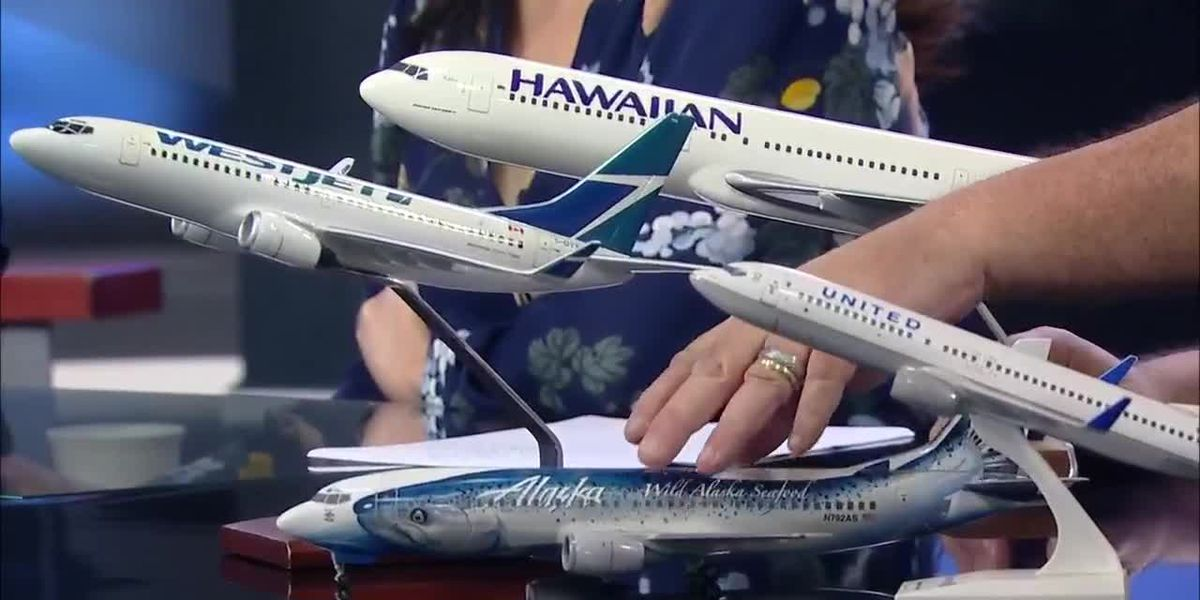 Business Report: Airplane seats to Hawaii