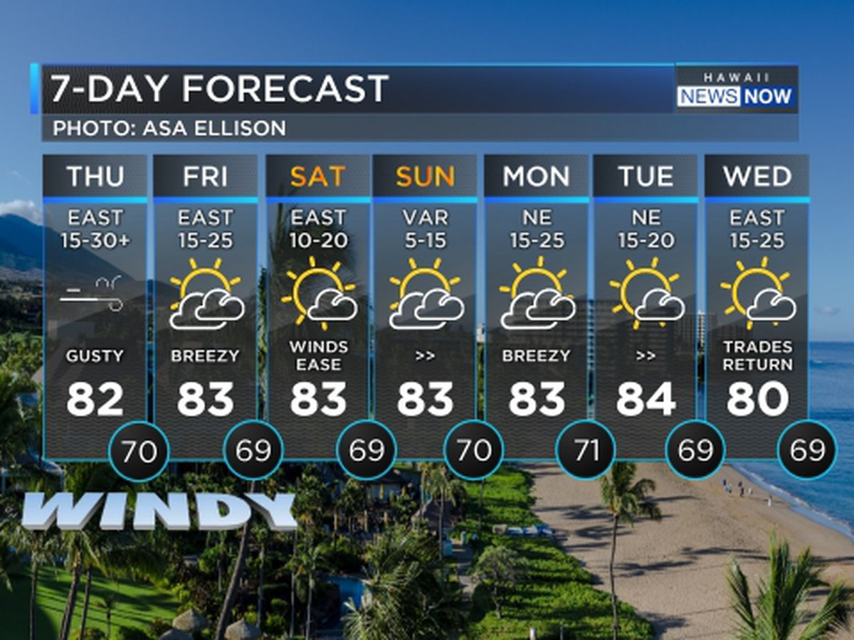 Forecast: Gusty winds persist today, ease up over the weekend