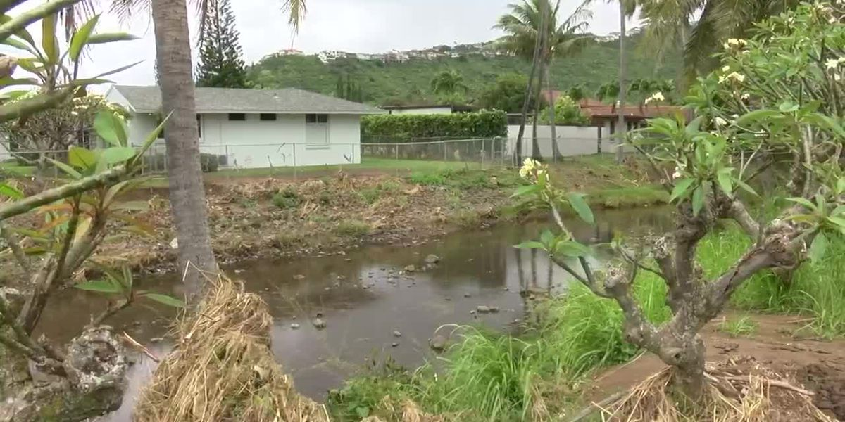 Class-action lawsuit alleges city negligent over East Honolulu flooding
