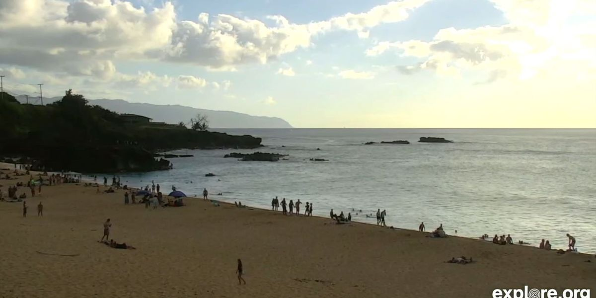 Warning signs remain posted at Waimea Bay after multiple sharks spotted