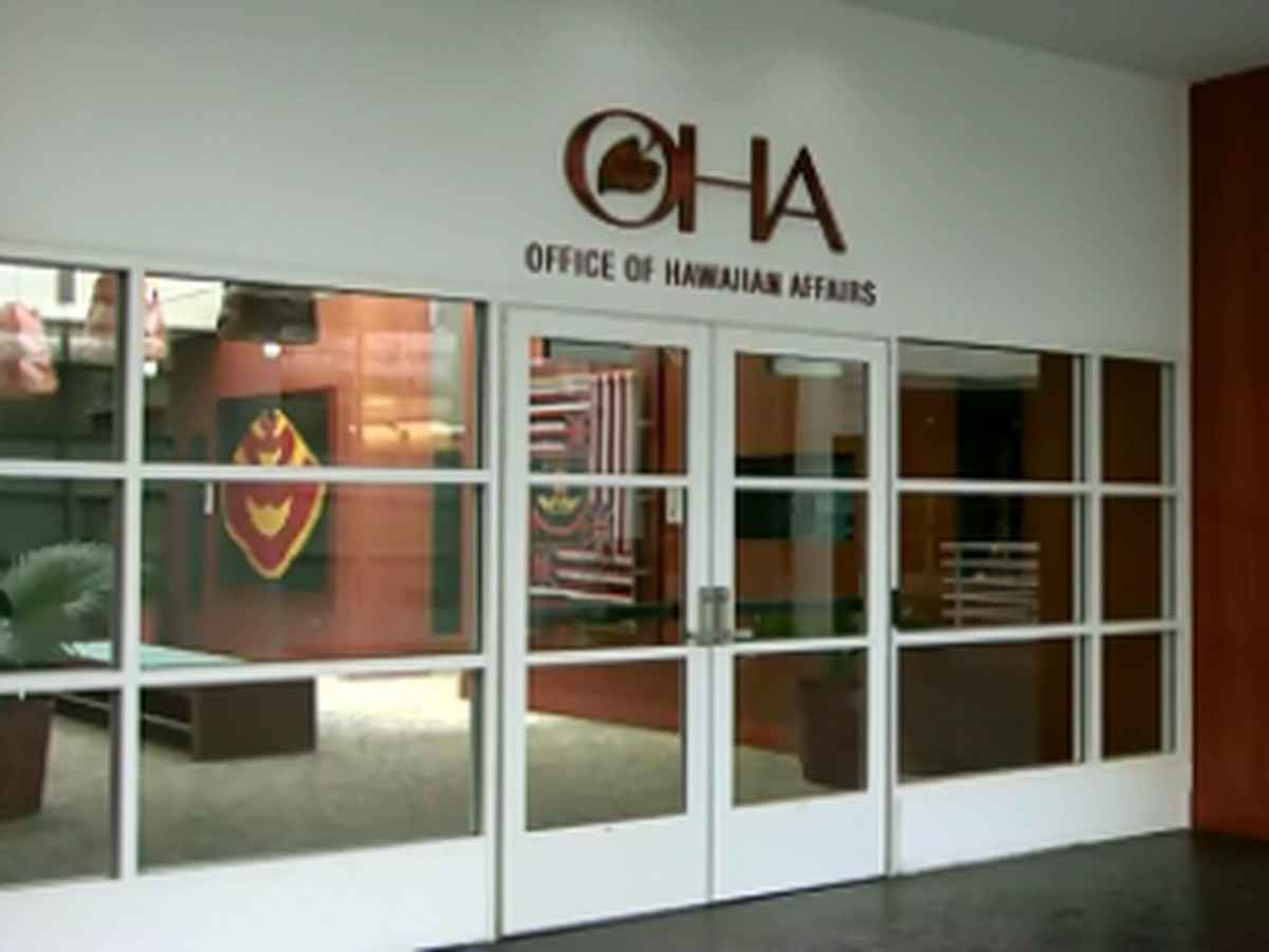 OHA appoints permanent CEO at 'critical moment' in its 40-year history