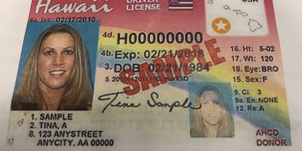 Driver's license, permit or ID expired? You now have more time to renew it