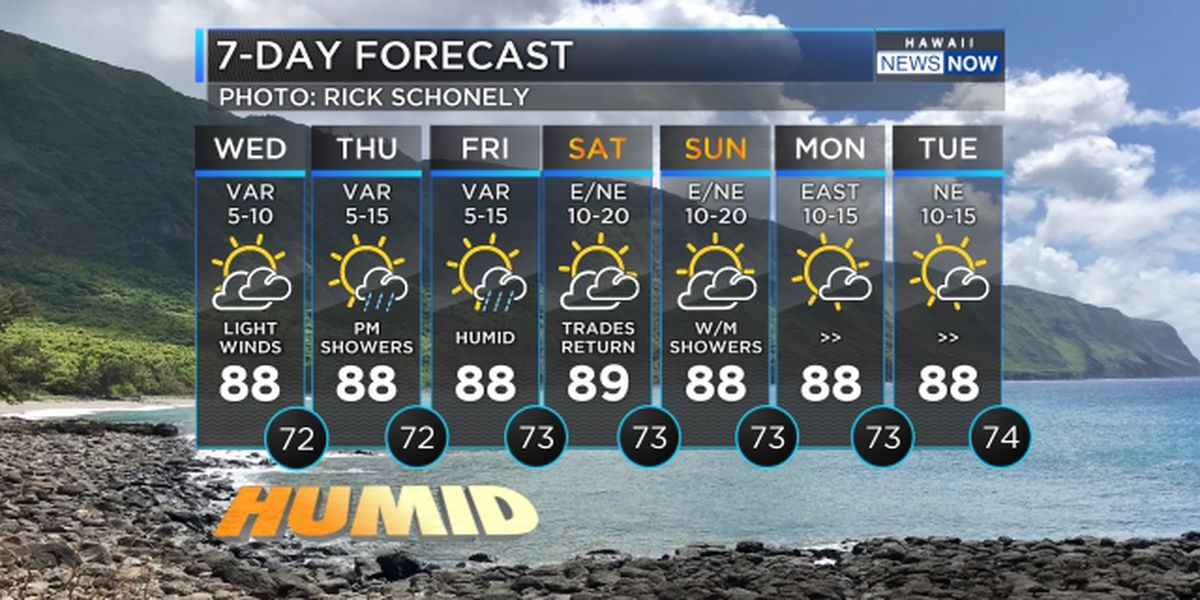 Forecast: Hot, muggy weather to hold into the weekend