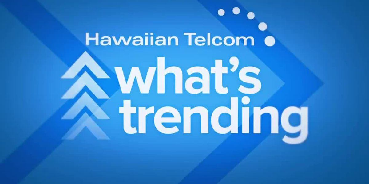 What's Trending: Hawaii jackpot winner, football hype man and cupcake consumption
