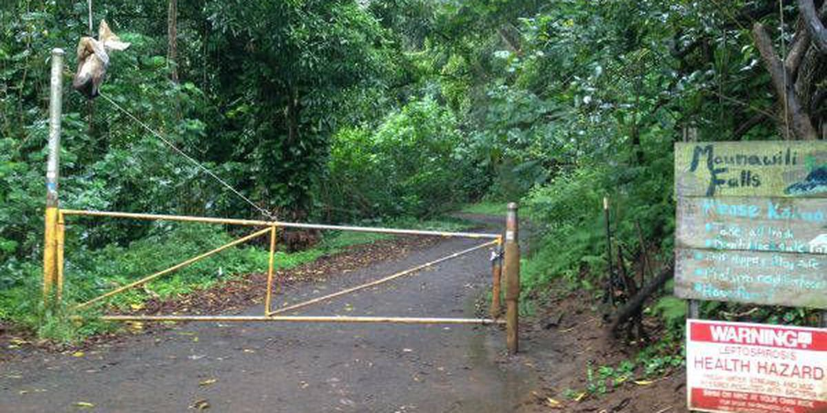 More than a dozen trapped hikers rescued from Maunawili Falls trail