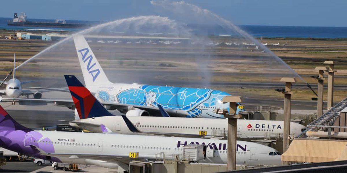 ANA's new honu-themed aircraft begins service between Honolulu, Tokyo