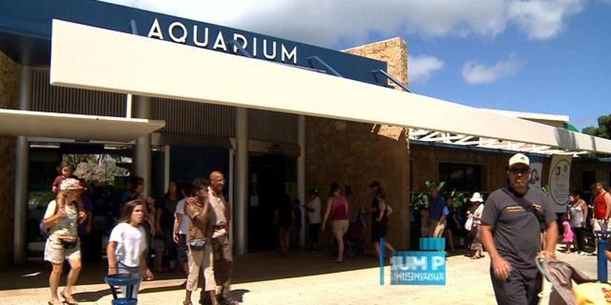 The Waikiki Aquarium celebrates its 114th Birthday with a splash