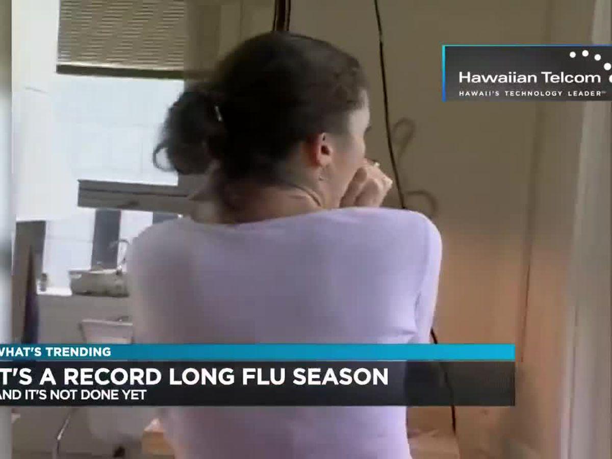 Trending: Flu season, Olympics exams, London zoo