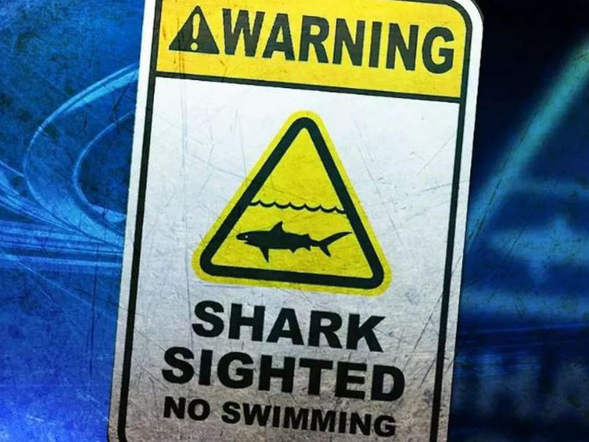 Warning signs posted at Maili Beach after large shark spotted near shore
