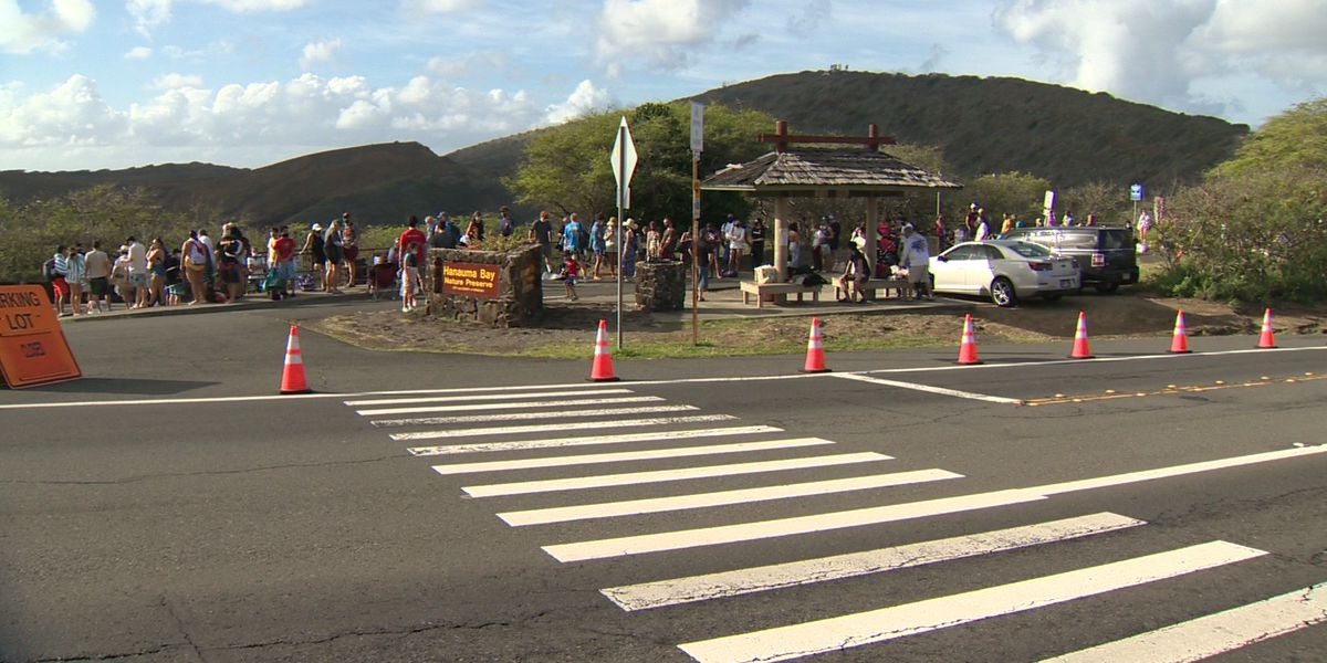 With no reservation system in place, lines and crowds return to Hanauma Bay