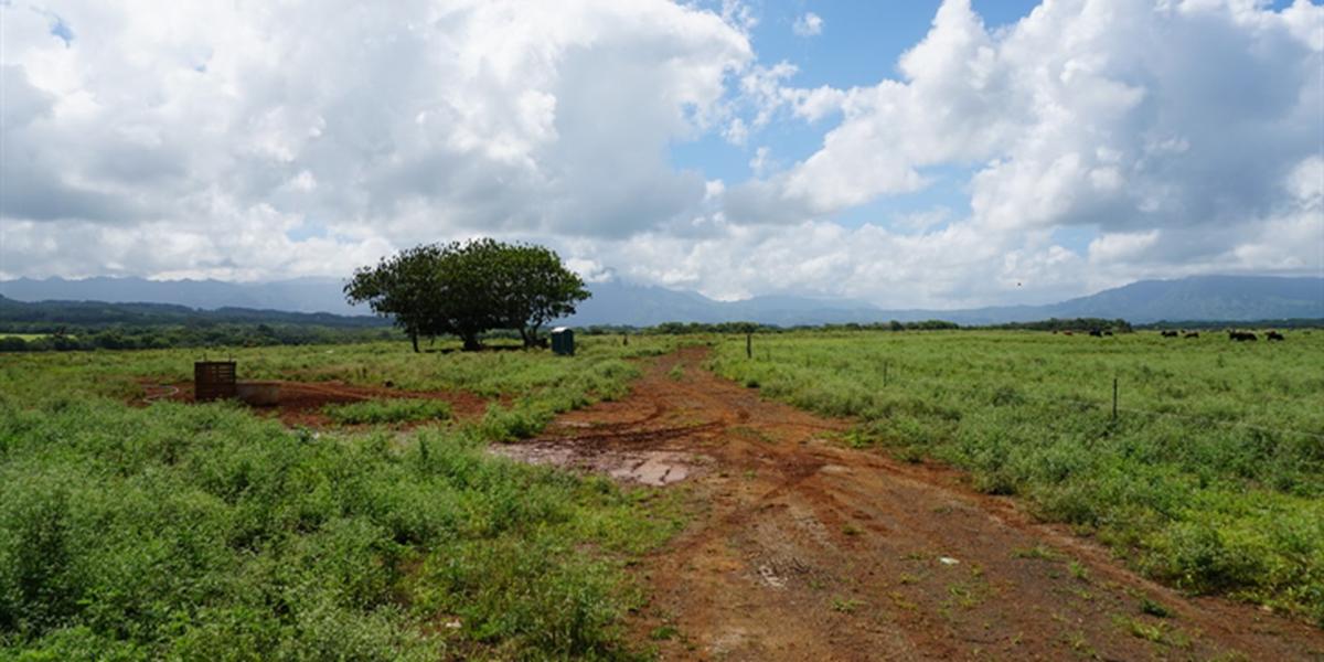 Groundbreaking held for Kauai solar energy project