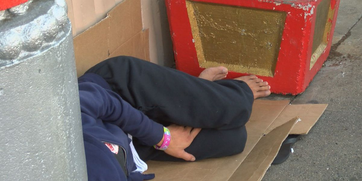 Report: Number of homeless living on Kauai streets nearly doubled since last year