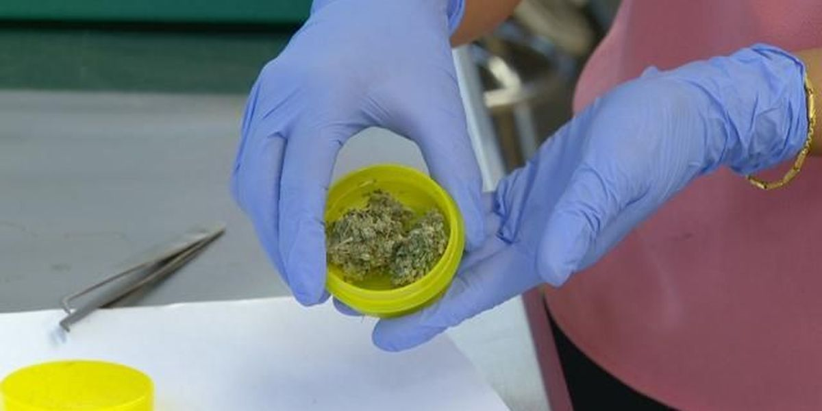 Lab: More than 20 percent of Hawaii medical marijuana products rejected for sale