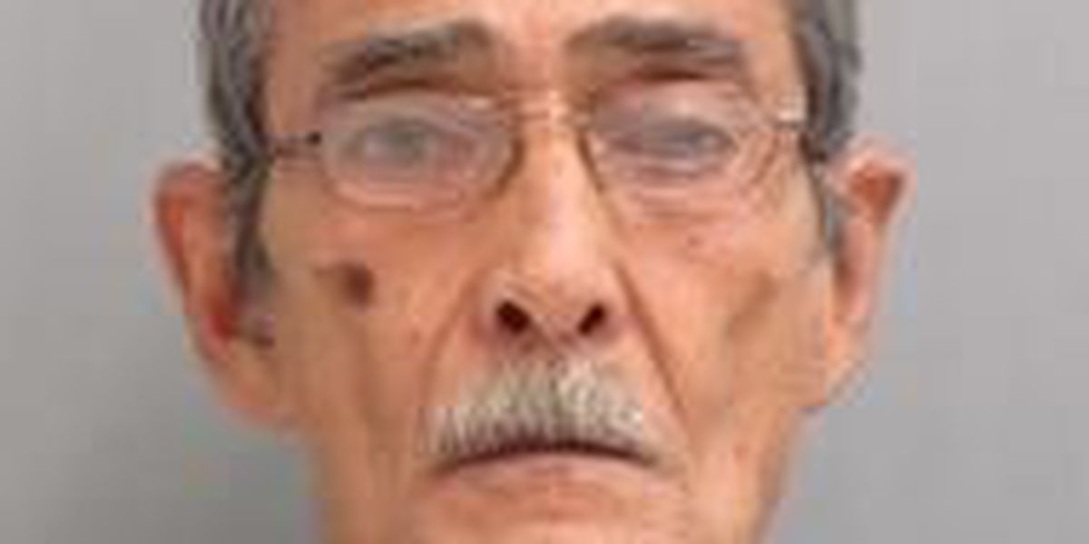 Ocean View man charged with firearms offenses
