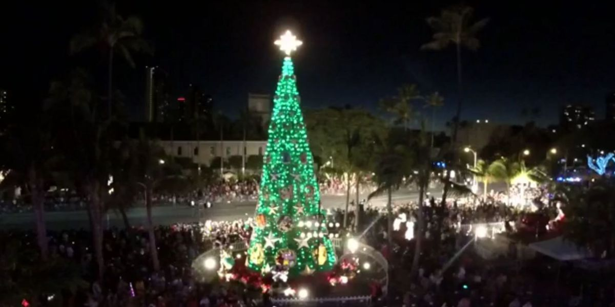 The lights are up, the tree is lit: Thousands welcome the holidays at annual city lights parade