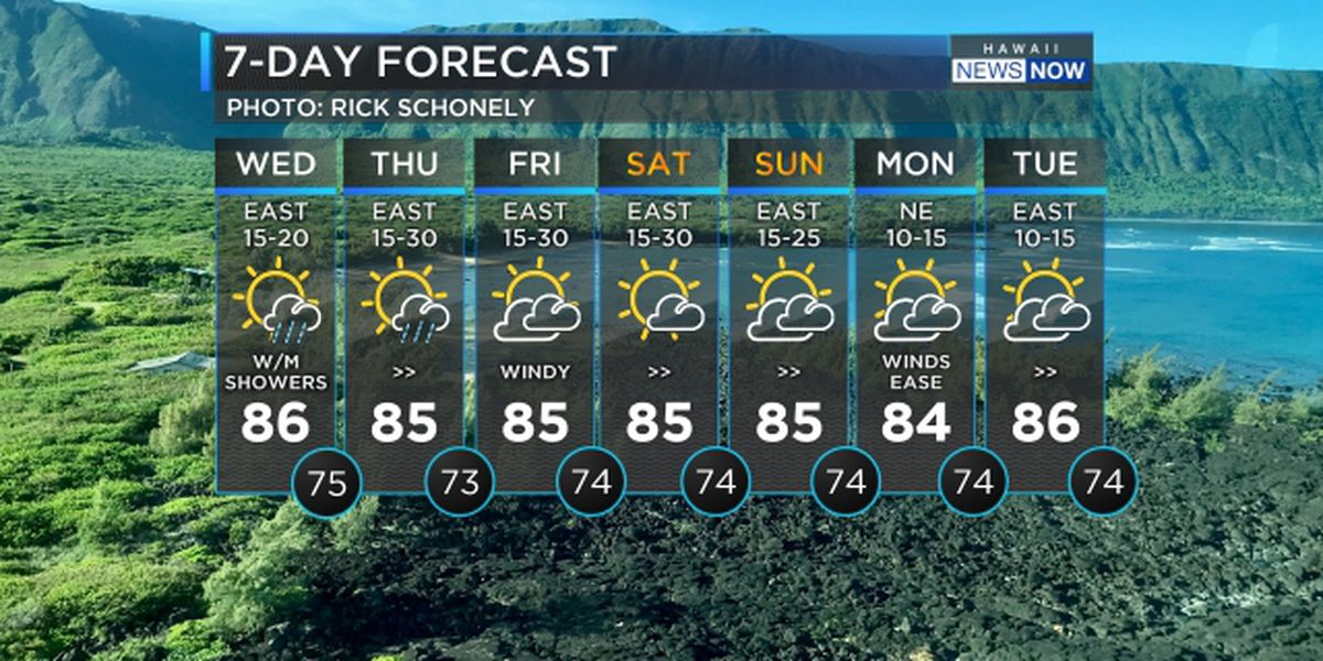 Forecast: Drier conditions taking over, stronger trade winds fill in