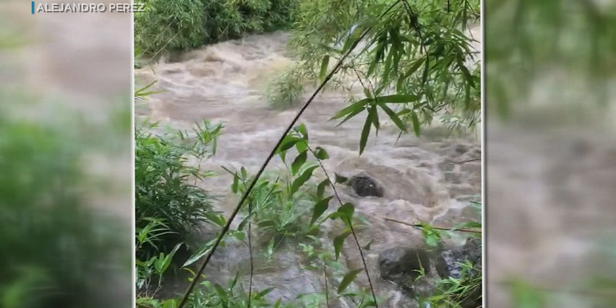 'As close to death as I've ever come': Video shows perils of flash flooding on Maui trail