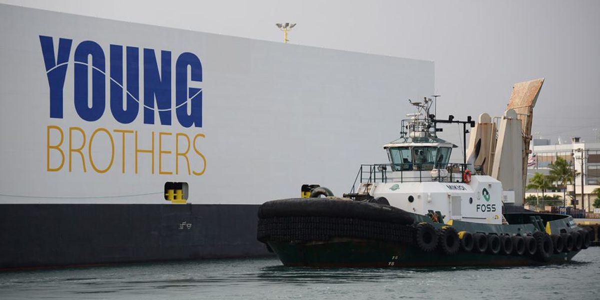 Their shipping lifeline in doubt, small Neighbor Island businesses face grim future