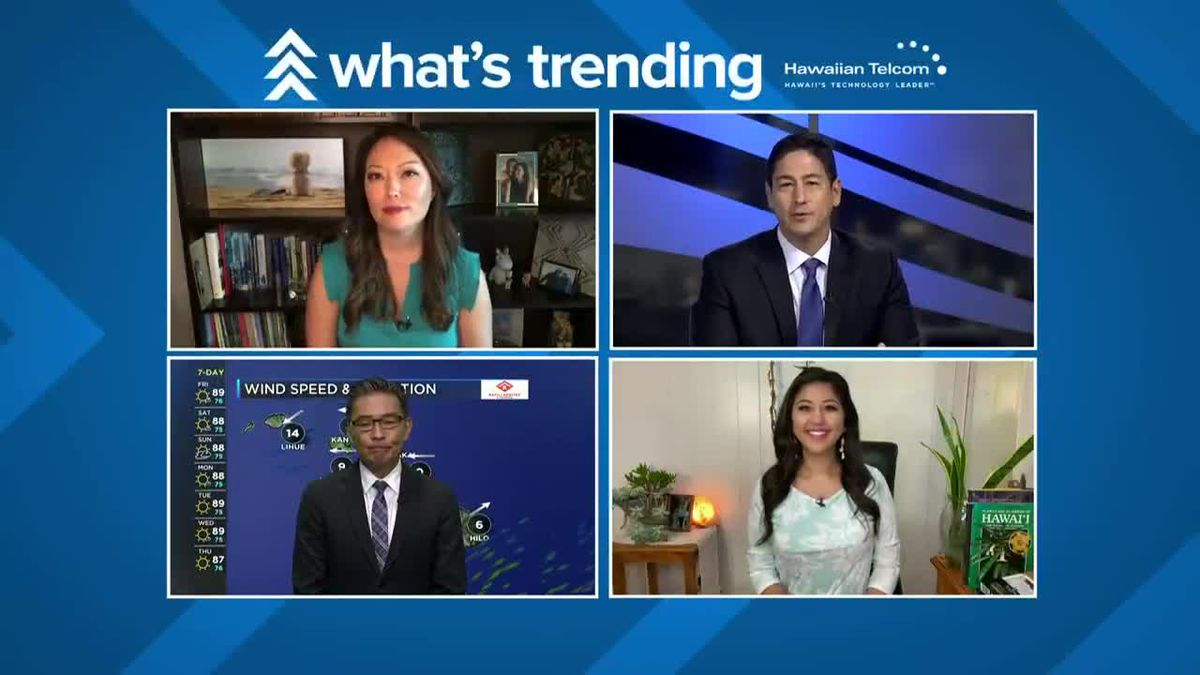 """What's Trending: St. Louis goes retro, Doogie Howser gets a Hawaii reboot and Lacy is fascinated with """"the splits"""""""