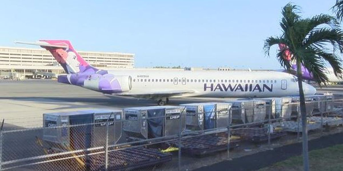 Man pleads guilty to threats on Hawaii flight, says he doesn't remember incident