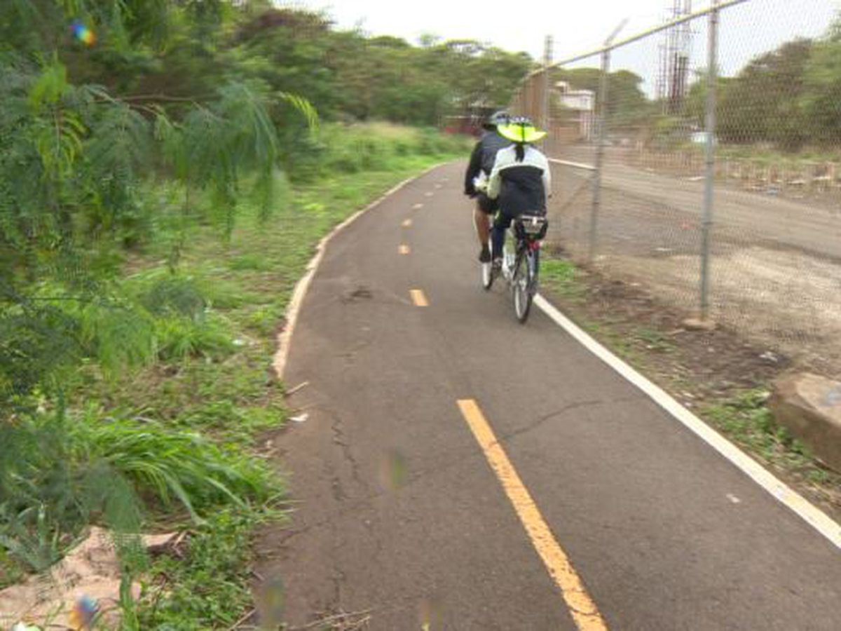 A bike ride in Pearl City ends with a trip to the ER after vicious dog attack