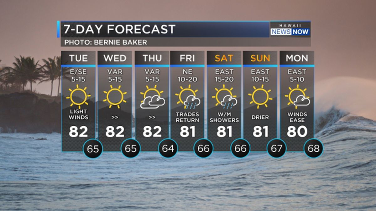 Forecast: Light winds to persist until the weekend