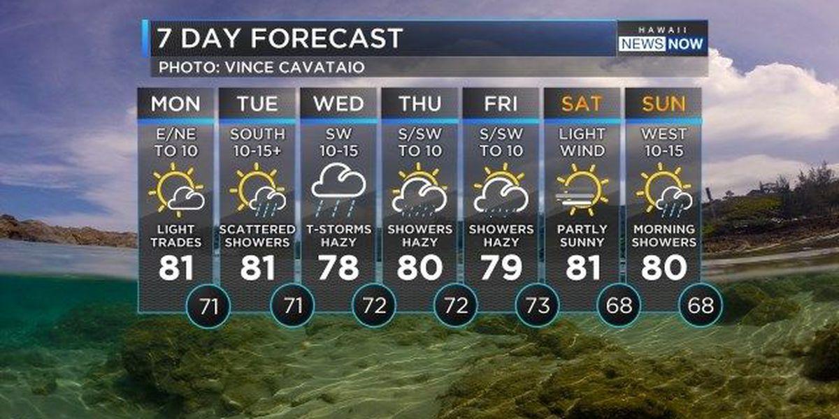 Forecast: Sunshine, light winds before days of wetter weather