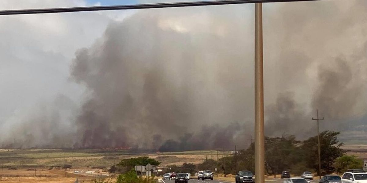 Wind-whipped brush fire on Maui burns more than 1,400 acres
