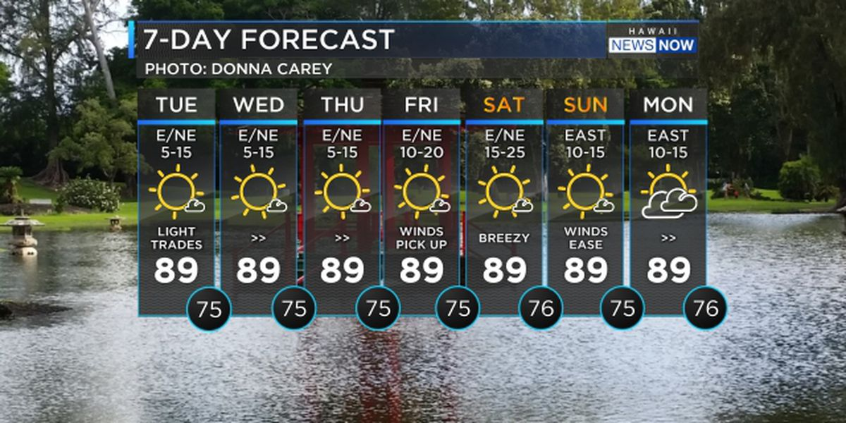 Forecast: Mostly dry conditions ahead of wetter weather