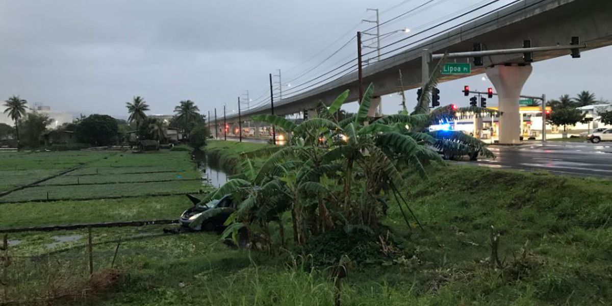 Man, 86, seriously injured after SUV lands in watercress farm in Aiea