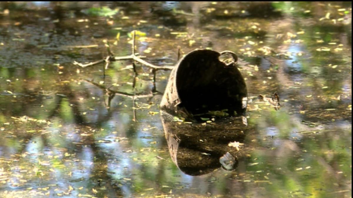 Sewage leak forces temporary closure of Sand Island Beach Park