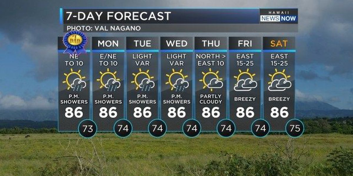 Forecast: Light NE trades to push vog south for Father's Day