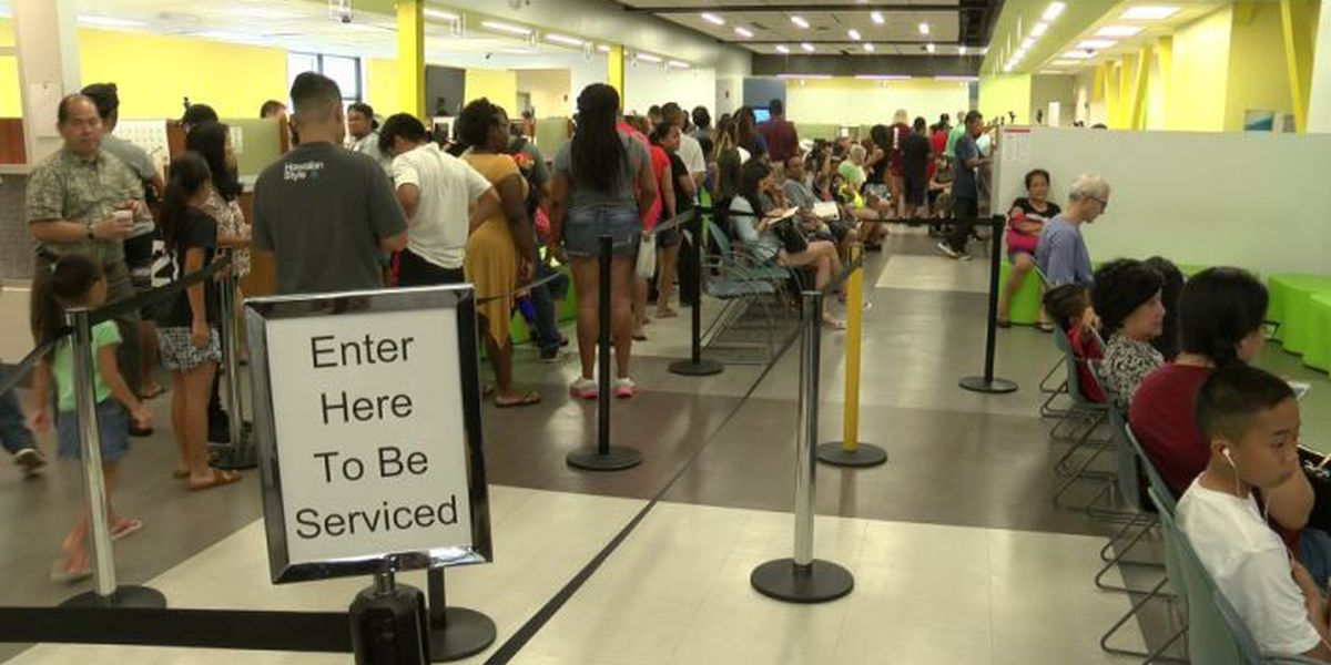 Saturday hours. Online renewals. City tries to make getting a new license less of a pain