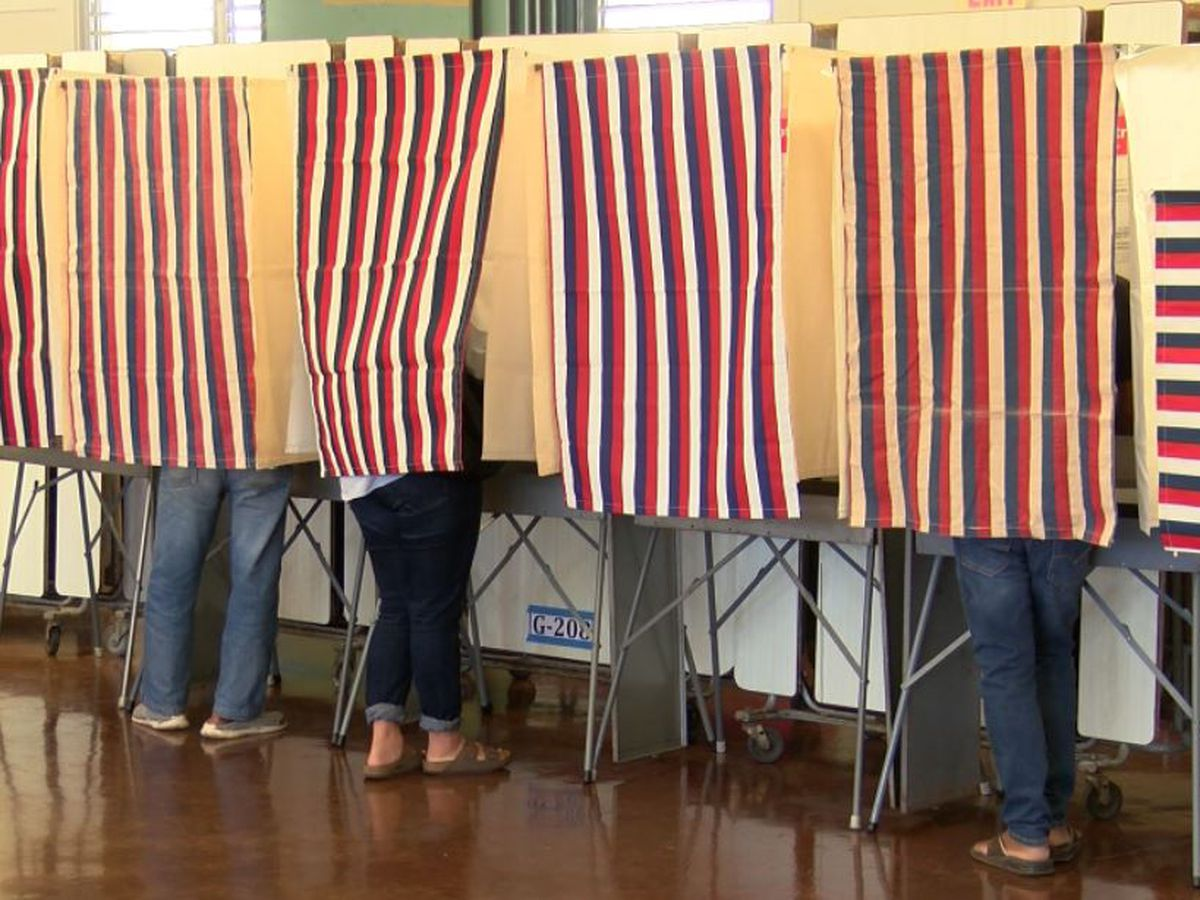 Election officials iron out changes to voting system