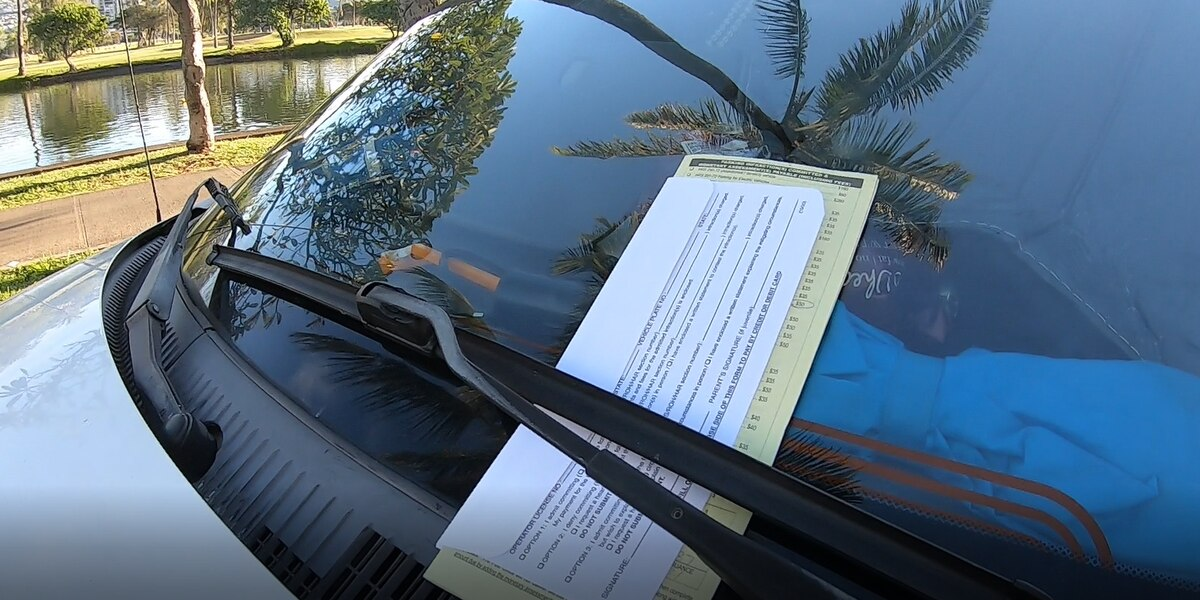 The state is owed $11M in unpaid parking fines from the last 5 years alone, records show