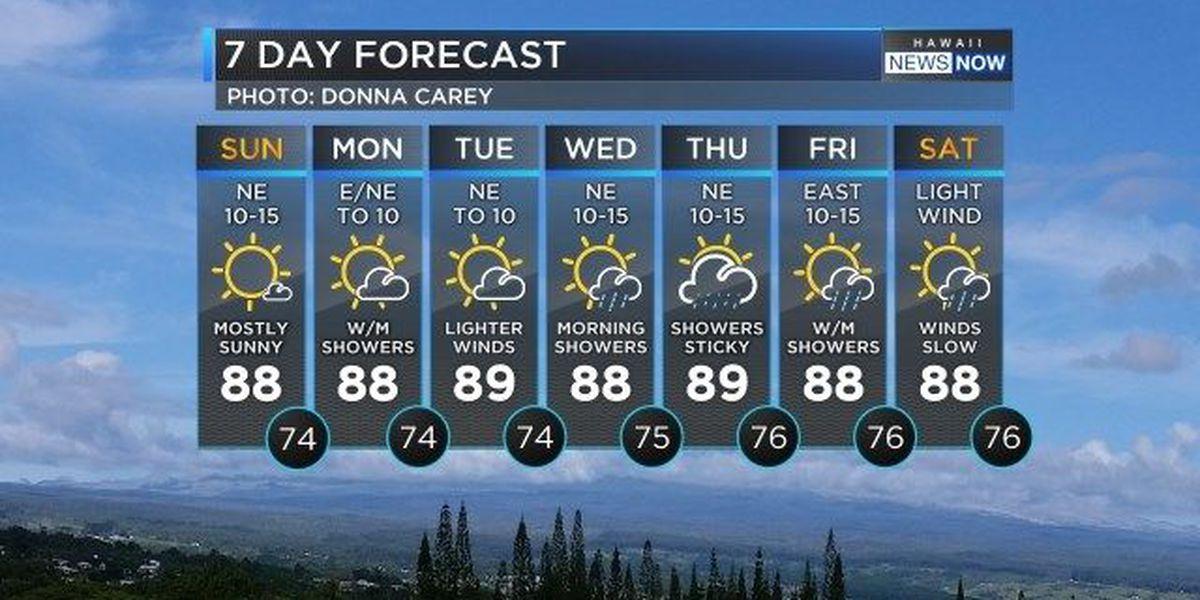 Forecast: More sunshine, few showers