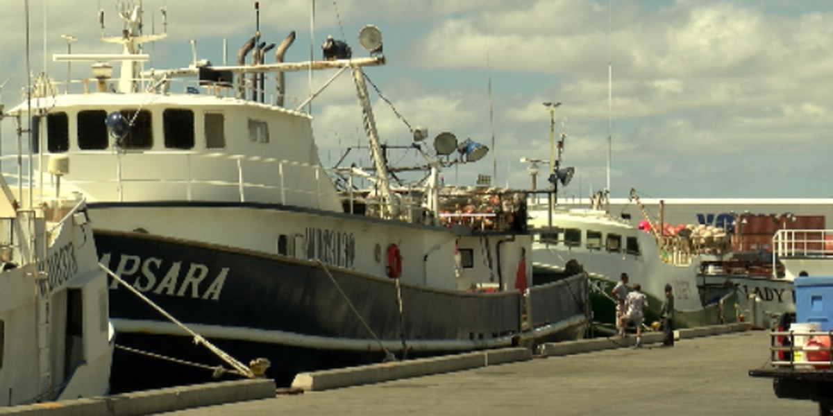 State wants to triple fees for commercial marine licenses