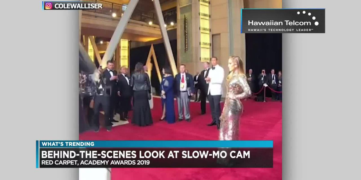 What's Trending: Kobe Bryant, cat vs roomba, slo-mo cam on the red carpet